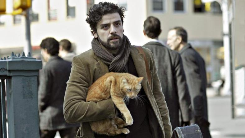 catcat.jpg?w=788&h=442